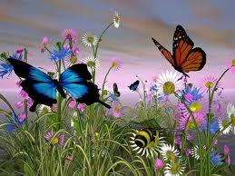 20120618155442-mariposas.jpg