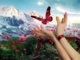 20120323225907-mariposa-5.jpg